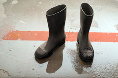 wellingtons Foto de Stock Royalty Free