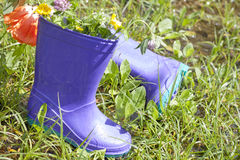 Wellingtons in spring rainy day Stock Images