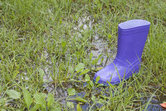 Wellingtons in spring rainy day Royalty Free Stock Photography