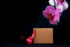 Wellnes卡片和桃红色兰花 库存图片