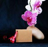 Wellnes card and pink orchid. Royalty Free Stock Images