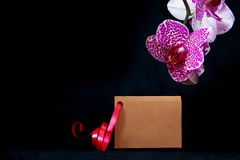 Wellnes card and pink orchid. Stock Images