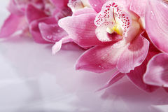 Wellnes close shot with pink flowers Stock Photo