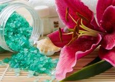 wellness προϊόντων Στοκ Εικόνα