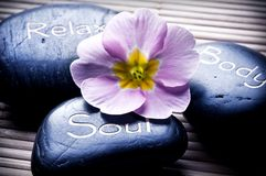 Wellness Stockbild