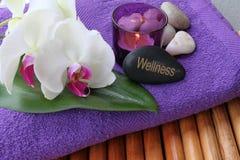 Wellness Royalty Free Stock Image