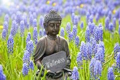 wellness Obrazy Stock