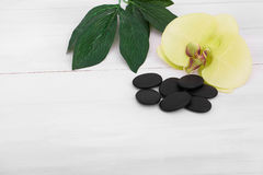 Wellness background with orchid flowers and spa tools: cream, lotion, towel and Royalty Free Stock Image