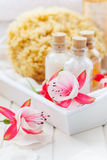Wellness and bath. Accessories in white Royalty Free Stock Image