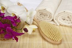 Wellness - bath brush, folded and rolled towels Stock Photography