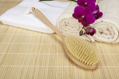 Wellness - bath brush, folded and rolled towels Stock Photos