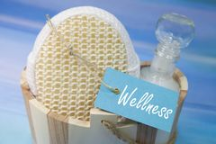 Wellness - bath set in blue and turquoise Royalty Free Stock Images