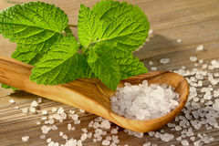 Wellness with bay salt Stock Photography