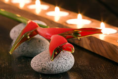 Wellness and Beauty. Red heliconia on stones with candle light in background Stock Photo
