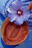 Wellness blu Fotografia Stock