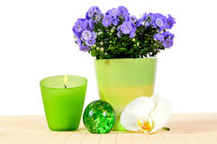 Wellness candle green  Orchid Stock Photo