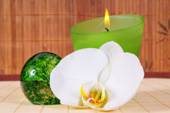 Wellness candle green Orchid Flower Stock Photography