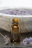 Wellness care products lavender oil in a bottle Stock Photography
