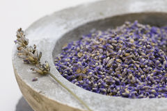 Wellness care products with lavender seeds Royalty Free Stock Photography
