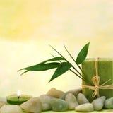 Wellness com sabão erval e folhas Imagens de Stock Royalty Free