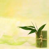 Wellness con sapone di erbe Immagini Stock
