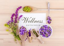 Wellness coupon royalty free stock photos