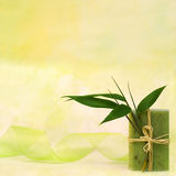 Wellness with herbal soap Stock Images