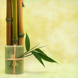 Wellness with herbal soap and bamboos Stock Photo