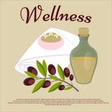 wellness Het Concept van de schoonheidssalon Stock Fotografie