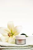 Wellness i zdroju elementy fotografia royalty free