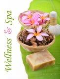 Wellness i zdroju pojęcie Zdjęcia Royalty Free