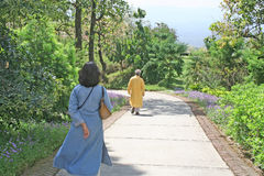 Wellness Industry_Fitness e salute - camminata verde della traccia di natura immagine stock