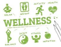 Wellness informaci grafika ilustracji