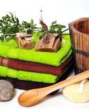 Wellness pflanzt Grün Stockfoto