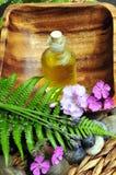 Wellness pflanzt grünes Schmieröl Lizenzfreie Stockbilder