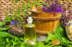 Wellness pflanzt grünes Schmieröl Lizenzfreies Stockfoto