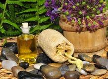 Wellness plant groene olie stock afbeelding