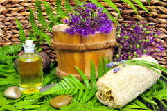 Wellness plant groene olie stock foto