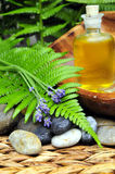 Wellness Plants green oil Royalty Free Stock Image