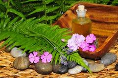 Wellness Plants green oil Royalty Free Stock Photo