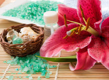 Wellness products Royalty Free Stock Photo