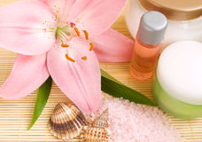 Wellness products Royalty Free Stock Photography