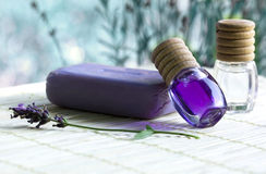 Wellness products Stock Photography