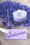 Wellness on purple label. A wellness background with purple label on which stands wellness Royalty Free Stock Photo