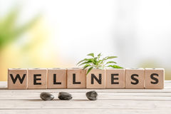 Wellness sign with wooden cubes. And flowers and stones Stock Image