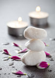 Wellness and spa Royalty Free Stock Photography