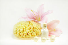 Wellness and spa Royalty Free Stock Photos