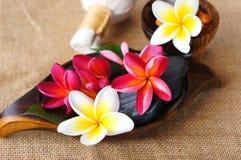 Wellness spa & aromatherapy έννοια Στοκ Εικόνες