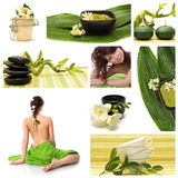 Wellness and spa collage. A collage of wellness - spa issues with two beautiful young women and a flower Royalty Free Stock Photo
