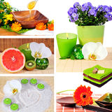 Wellness spa collage. Flowers pictures Royalty Free Stock Photography